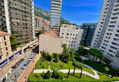 1 bedroom apartment - Palais de la Scala
