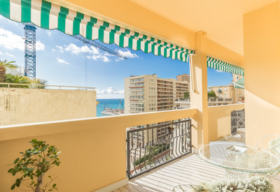 2 bedroom apartment - Le Calypso