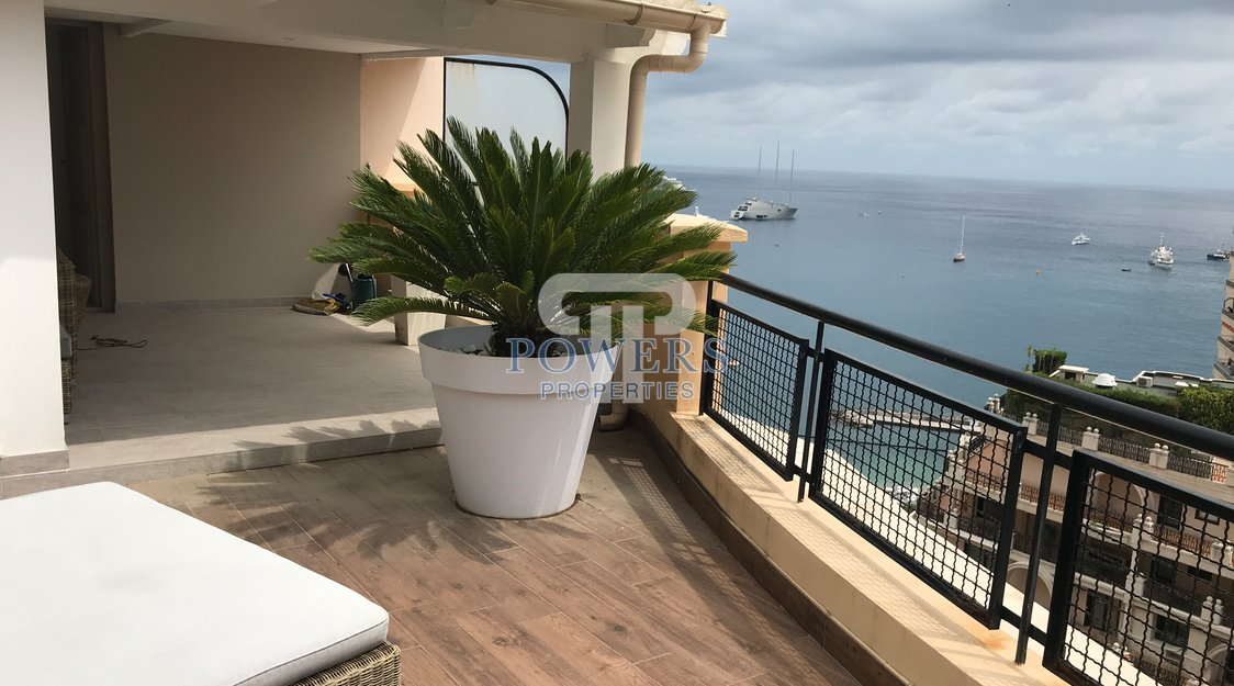 Stunning luxuriously renovated penthouse