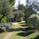 Fayence, wonderfull property on 5 acres - 16