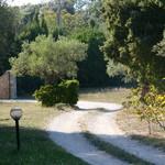 Fayence, wonderfull property on 5 acres - 20