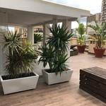 Stunning luxuriously renovated penthouse - 8