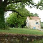 Fayence, wonderfull property on 5 acres - 3